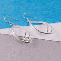 Silver Larme Drop Earrings