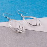 Silver Larme Drop Earrings